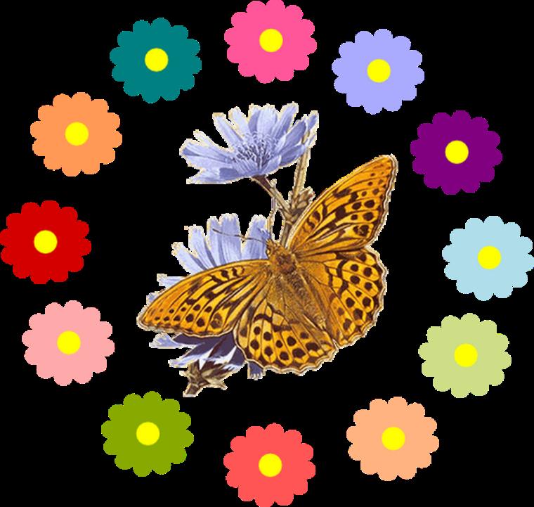 Qu'est-ce que le printemps_fleurs-papillons-transparent_wp