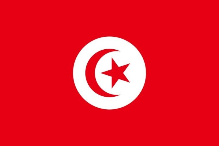 Tunisie_maltraitance d'enfants autistes_flag_wp