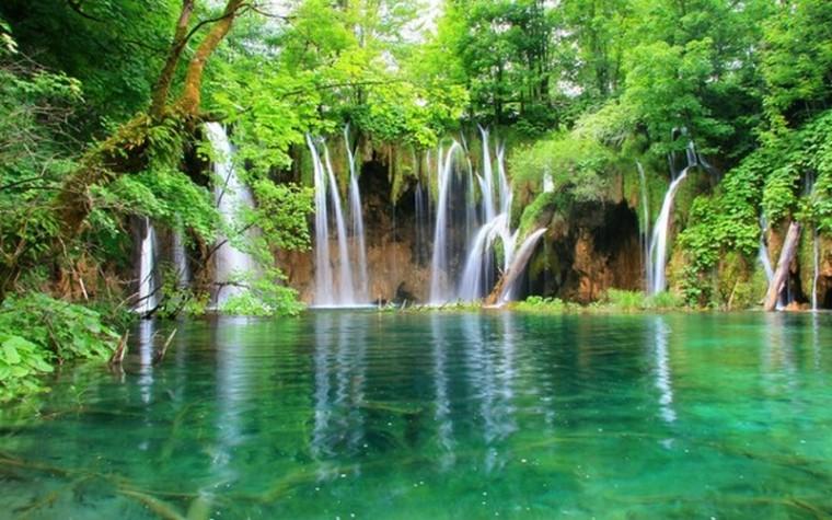 Paysages d'été_forêt-cascade_wp