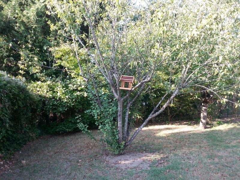 Welcome to Mériel_jardin-niche-oiseaux-arbre_wp