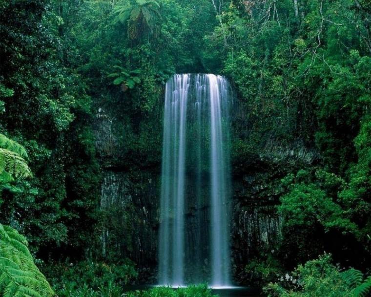L'eau, l'élément de la vie..._cascade-dans-forêt-verte_wp